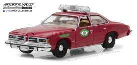 Pontiac  - 1976  - 1:64 - GreenLight - gl42830B | The Diecast Company