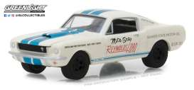 Shelby  - GT-350 *Super Horse* 1965 white/blue - 1:64 - GreenLight - gl29949 | The Diecast Company