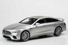 Mercedes Benz AMG - AMG GT63S 2019 silver - 1:18 - Paragon - 78013 - para78013 | The Diecast Company