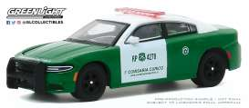 Dodge  - Charger 2018 green - 1:64 - GreenLight - 30162 - gl30162 | The Diecast Company