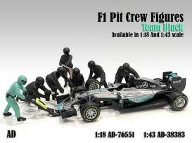 Figures diorama - Team Black #1 2020 silver - 1:43 - American Diorama - 38383 - AD38383 | The Diecast Company