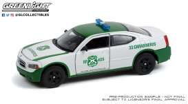 Dodge  - Charger 2006 white/green - 1:43 - GreenLight - 86605 - gl86605 | The Diecast Company