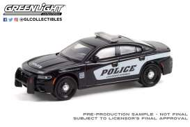 Dodge  - Charger 2021 black/white - 1:64 - GreenLight - 30314 - gl30314 | The Diecast Company